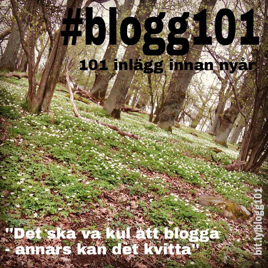 #blogg101